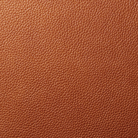 Baked Bean  Edelman All Grain Leather VB06